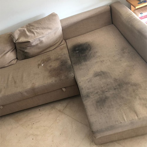 dirty-couch-before-cleaning
